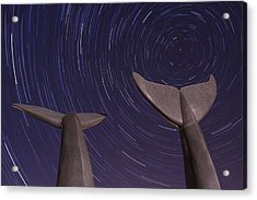 Vermont Night Landscape Star Trails Whale Tails Acrylic Print by Andy Gimino