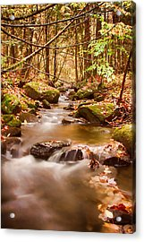 Acrylic Print featuring the photograph Vermont Stream by Jeff Folger