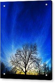 Vernal Sunset Acrylic Print
