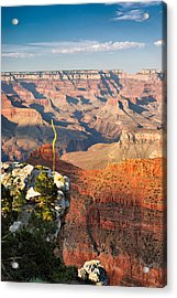 Grand Canyon At Sunset Acrylic Print by Gregory Ballos