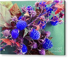 Very Blue Berries Acrylic Print by Tina M Wenger