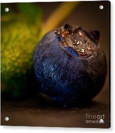 Very Blueberry Square Acrylic Print by Patricia Bainter