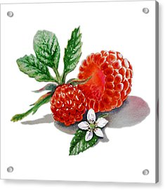Artz Vitamins A Very Happy Raspberry Acrylic Print