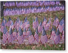 Veterans Day Display Color Acrylic Print