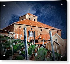 Acrylic Print featuring the painting Viansa by Andrew Drozdowicz