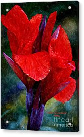 Vibrant Canna Bloom Acrylic Print