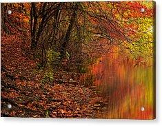 Vibrant Reflection Acrylic Print by Lourry Legarde
