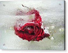 Victim Of Anti-aging Acrylic Print