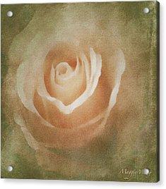 Victorian Vintage Pink Rose Acrylic Print
