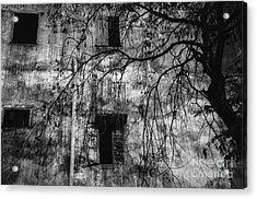 Vientiane Grey Acrylic Print by Dean Harte