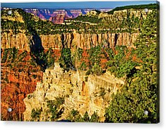 Acrylic Print featuring the photograph View From Angel Point  by Bob and Nadine Johnston