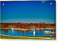 Acrylic Print featuring the photograph View From Art Hill Forest Park Missouri by Peggy Franz