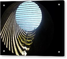 View From Below Acrylic Print by James Potts