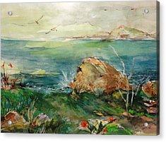 View From Greenpoint Condo Acrylic Print by Mary Spyridon Thompson