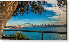 View From Lady Macquarie's Chair Acrylic Print by Dasmin Niriella