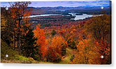 View From Mccauley Mountain II Acrylic Print by David Patterson