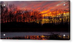 View From My Driveway Crop 2 Acrylic Print by Michael J Samuels