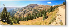 View From Old Fall River Road Acrylic Print by Panoramic Images
