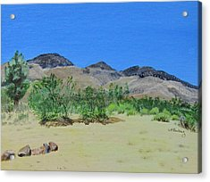 View From Sharon's House - Mojave Acrylic Print