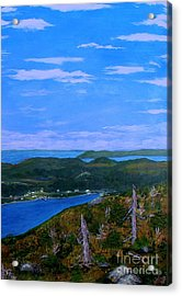View From Sugarloaf Hill Ship Harbour Bottom Acrylic Print by Barbara Griffin