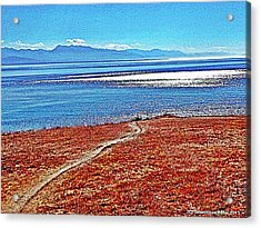 View From The Battery At Fort Ebey Acrylic Print