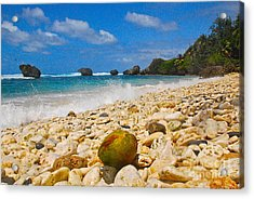 View From The Coconut Acrylic Print by Blake Yeager