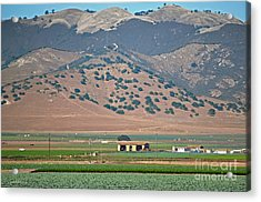 View From The Crops Acrylic Print