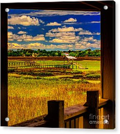 View From The Porch Acrylic Print