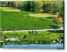 View Of Great Lawn In Central Park Acrylic Print by George Atsametakis