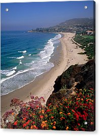 View Of Salt Creek Beach Acrylic Print by Cliff Wassmann