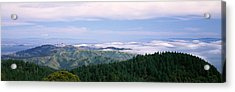 View Of San Francisco From Mt Acrylic Print by Panoramic Images