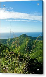 View Of South West Coast From Boggy Acrylic Print
