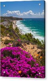 View Of Strand Beach And Dana Point Headland Acrylic Print