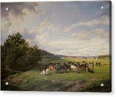 View Of The Kladrub Studfarm In Bohemia, 1850 Acrylic Print