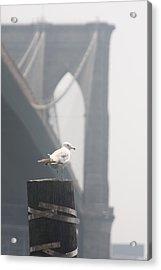 View On Brooklyn Bridge Acrylic Print by Vadim Levin