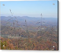 View Past Lover's Leap Acrylic Print by Angelia Hodges Clay