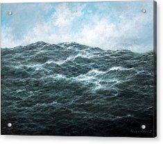 View Acrylic Print by Richard Willis