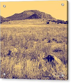 View To A Mountain Acrylic Print by Mickey Harkins