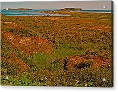 Viking Landing Point At L'anse Aux Meadows-nl Acrylic Print