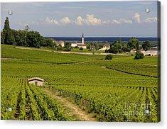 Village Of Aloxe Corton. Cote D'or. Burgundy. France Acrylic Print by Bernard Jaubert