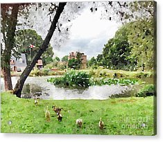 Village Pond Watercolor Acrylic Print by John Edwards
