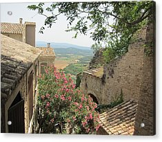 Acrylic Print featuring the photograph Village Vista by Pema Hou