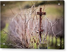 Vinepost Acrylic Print by Mike Lee
