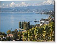 Vines Over Lake Geneva Acrylic Print