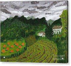 Vineyard And Haystacks Under Stormy Sky Acrylic Print by Vicki Maheu