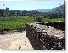 Vineyard And Winery Ruins At Historic Jack London Ranch In Glen Ellen Sonoma California 5d24537 Acrylic Print by Wingsdomain Art and Photography