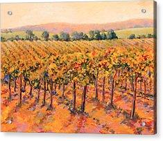 Vineyard Gold Acrylic Print by B J  Stapen