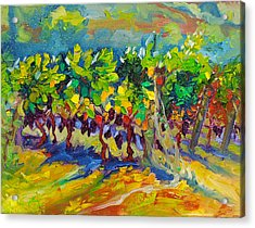 Vineyard Harvest Oil Painting Acrylic Print