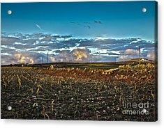 Vineyard In Lava Acrylic Print by Patricia Hofmeester