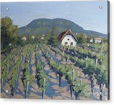 Vineyard Of Badacsony Acrylic Print